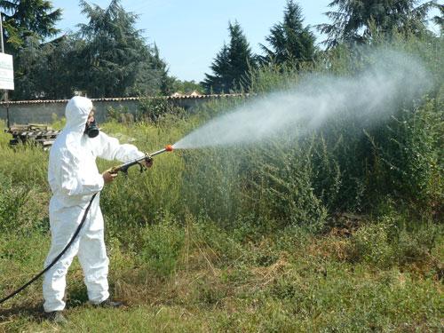 E' in corso servizio disinfestazione contro le zanzare