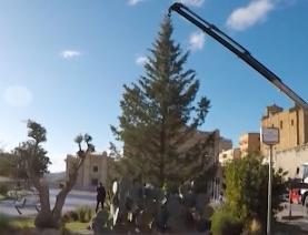 Agrigento. L'albero di natale c'è ma non lo paga il comune News Agrigentotv